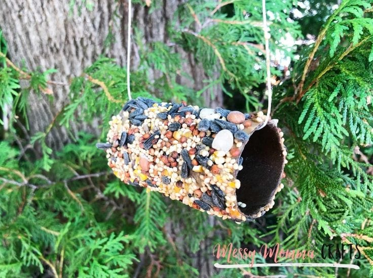 A bird feeder made out of a toilet paper roll and birdseed.