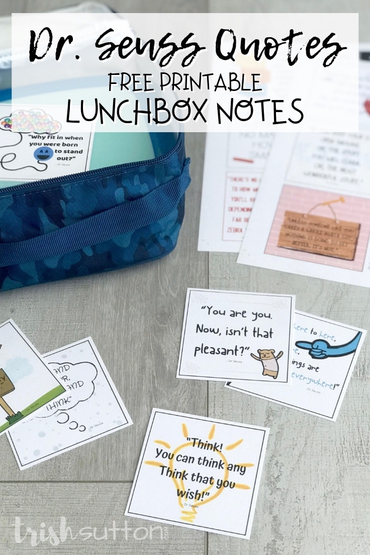 Dr Seuss quotes printed on square notes next to a child's lunchbox.