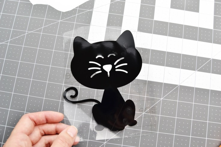 the cat decal with the transfer tape on the front