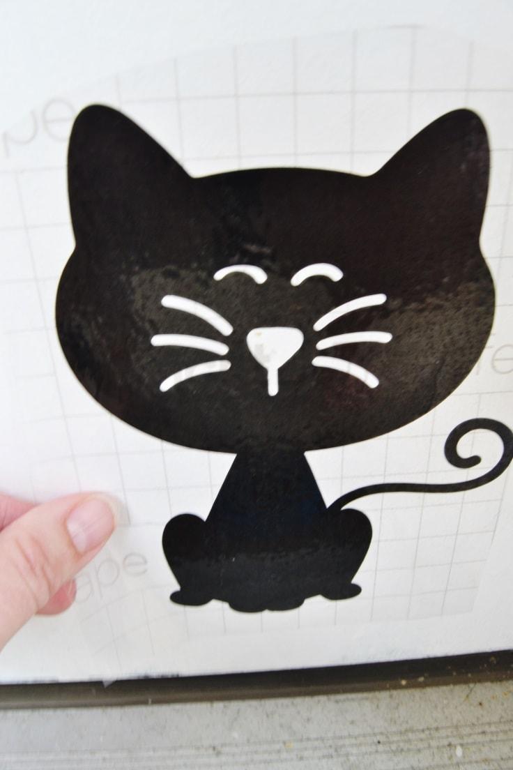 applying the cat decal to the door