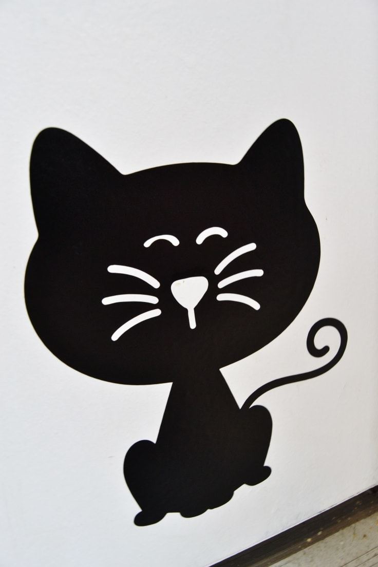 the cat decal applied to the door