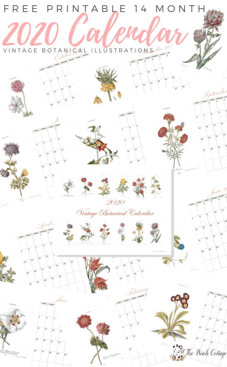 2020 Printable Monthly Calendar with Vintage Botanical Art by The Birch Cottage