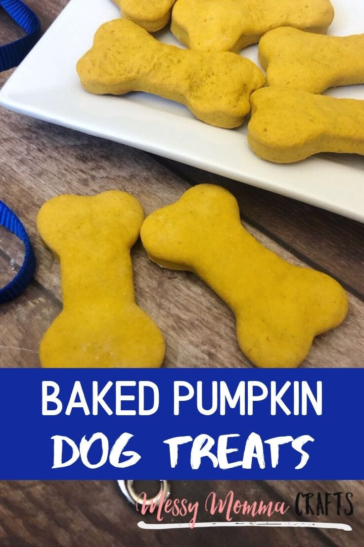This Easy Baked Pumpkin Dog Treats Recipe is the perfect homemade treat for your pup during the cooler months. Dogs love the smell of fall too. #dogtreats #dogs #ideasforthehome #kenarry