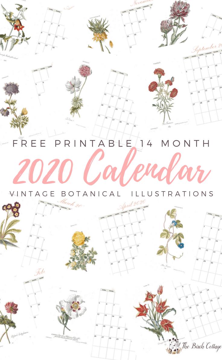 Free Printable 14 month 202 Calendar with Vintage Botanical Illustration