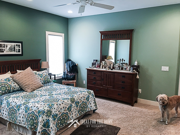 Before photo of a sage green master bedroom, a scruffy dog is peeking into the room