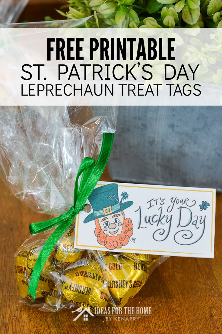 Free Printable St. Patrick's Day Leprechaun Treat Tags