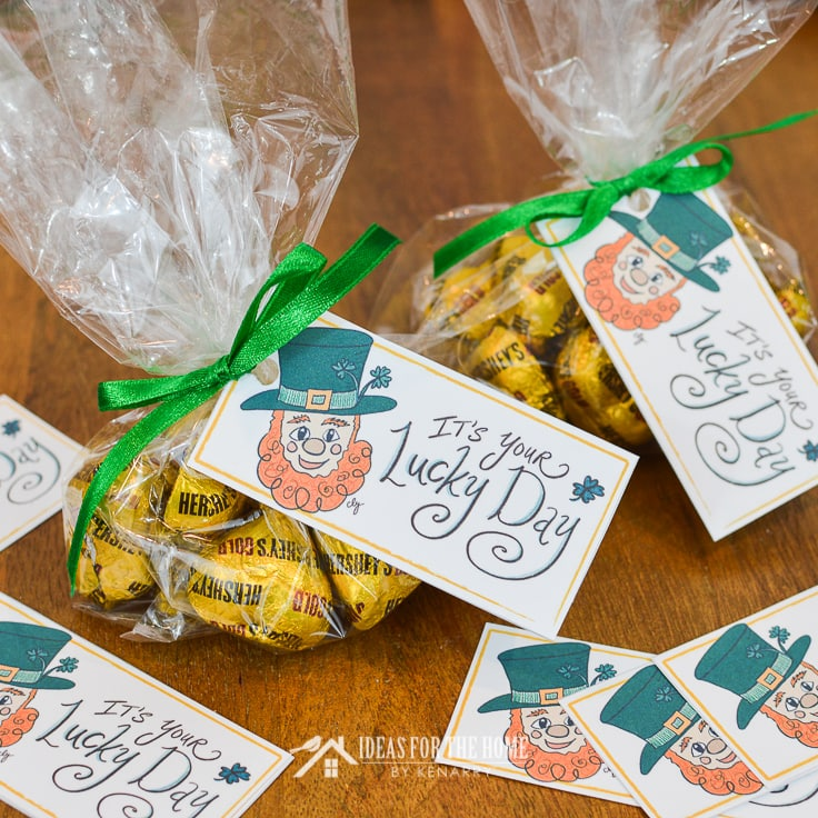Leprechaun printable gift tags used for St. Patrick's Day treats and party favors
