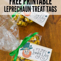 Free Printable Leprechaun Treat Tags
