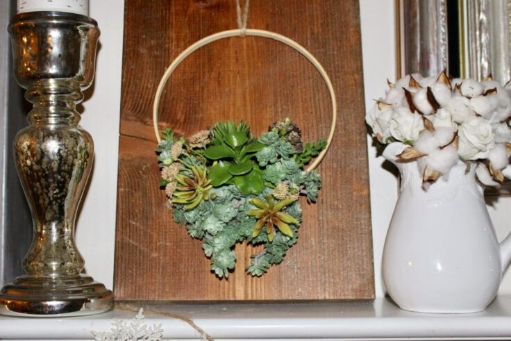 succulent embroidery hoop wreath on wood board