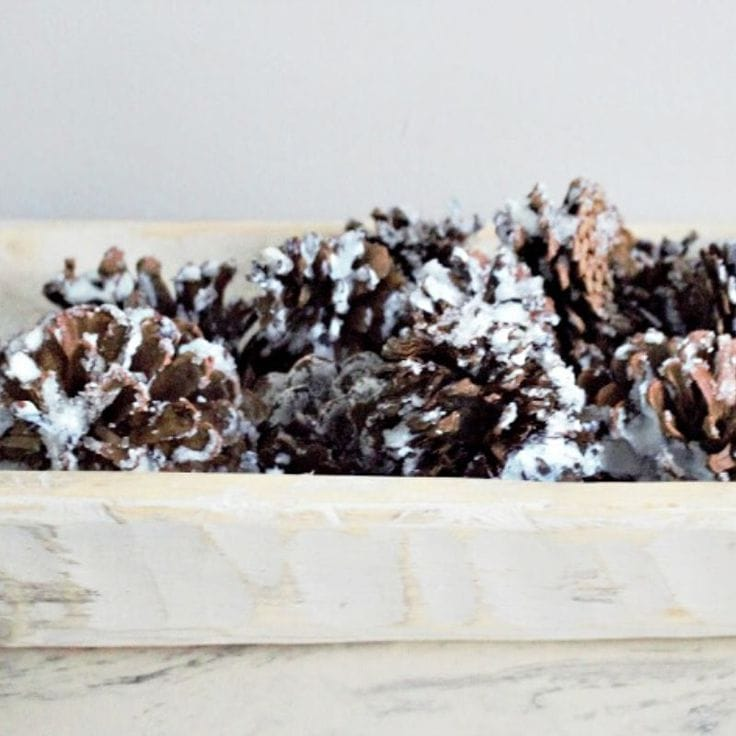 How to Make DIY Snow-Covered Pine Cones