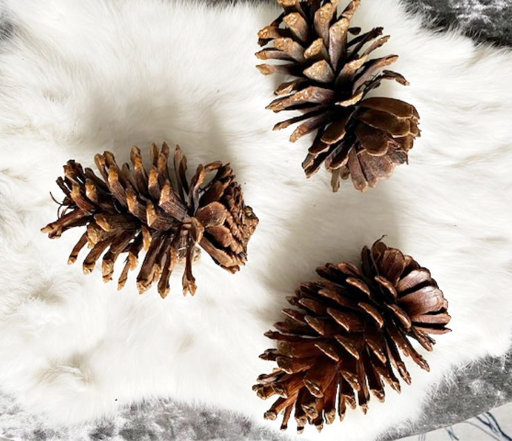 pine cones set of 3 on white fur rug