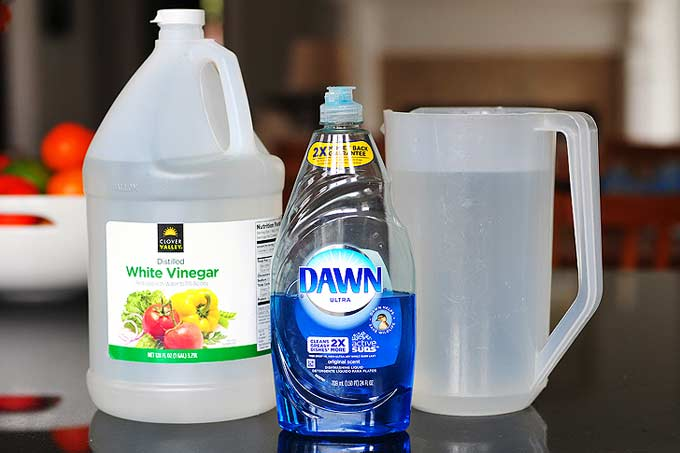 all-natural window cleaner with vinegar and dish soap