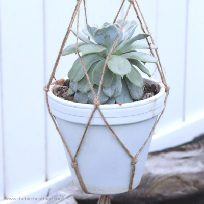 DIY Easy Macrame Plant Hanger by The Birch Cottage