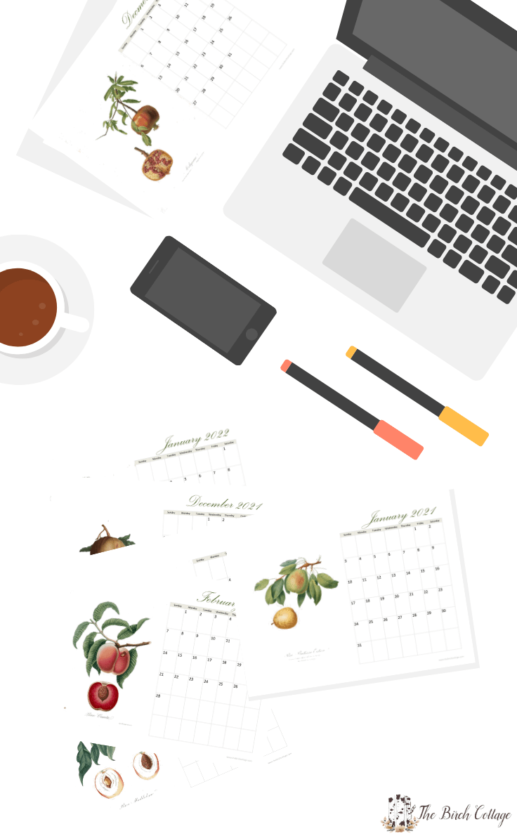 2021 printable Calendar with vintage fruit illustrations