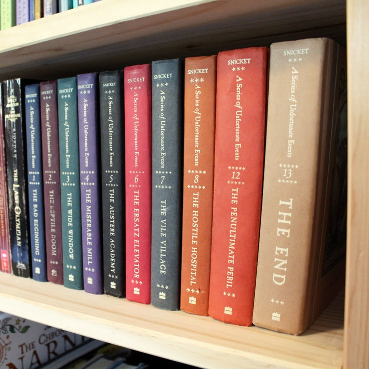 How to Organize Books in Your Home Library
