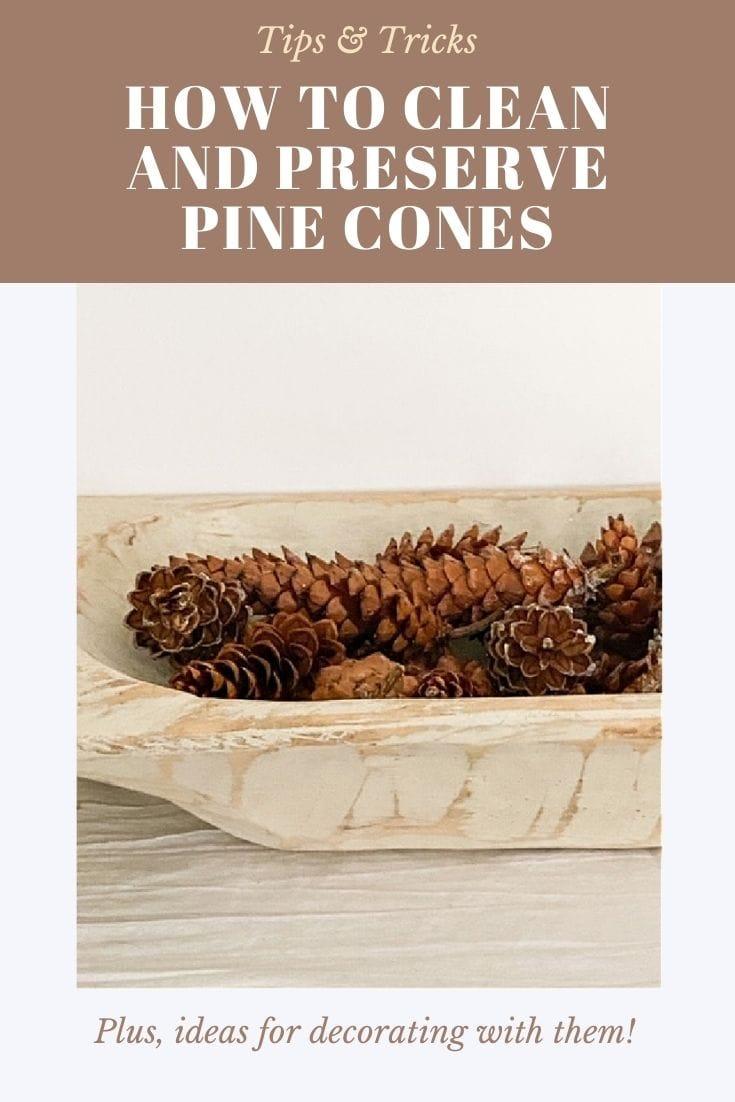 pine cones in dough bowl