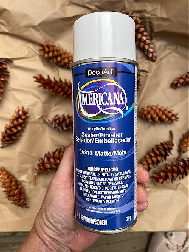 sealer for pine cones