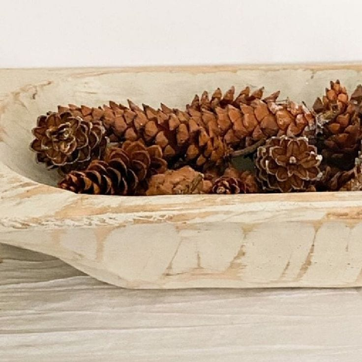 How to Clean and Preserve Pine Cones to Use For Home Decorating
