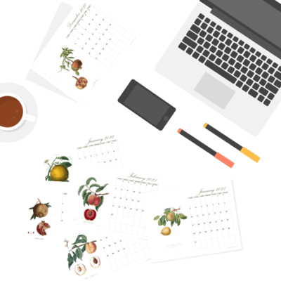 Get a jump start on your home organization goals with this 2021 printable calendar featuring vintage fruit.