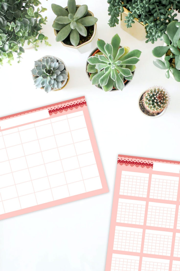 Succulent plants on white table with preview of monthly and yearly blank calendar template printables.