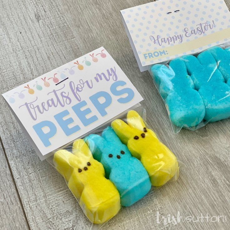 DIY Easter Gift: Treats for My Peeps With Free Printable Gift Tag