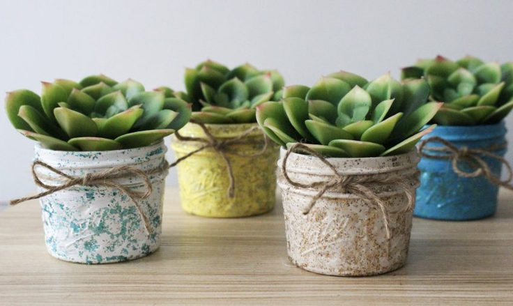 Succulents in mason jars from Our Crafty Mom.