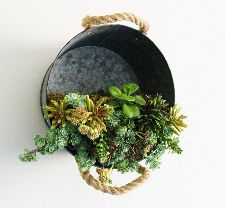 Hanging succulent planter from Our Crafty Mom.