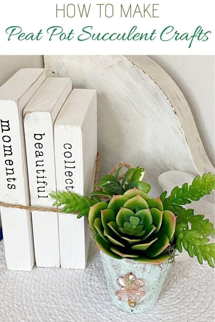 Peat pot faux succulent craft as decor on a shelf.