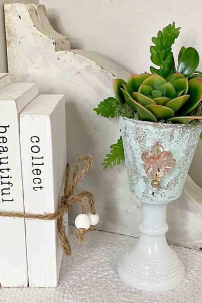 peat pot with succulents on table