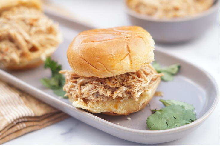 Closeup of shredded chicken on a bun showing spice details.