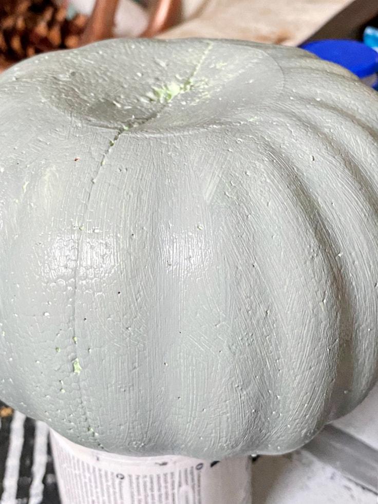 close up of green pumpkin