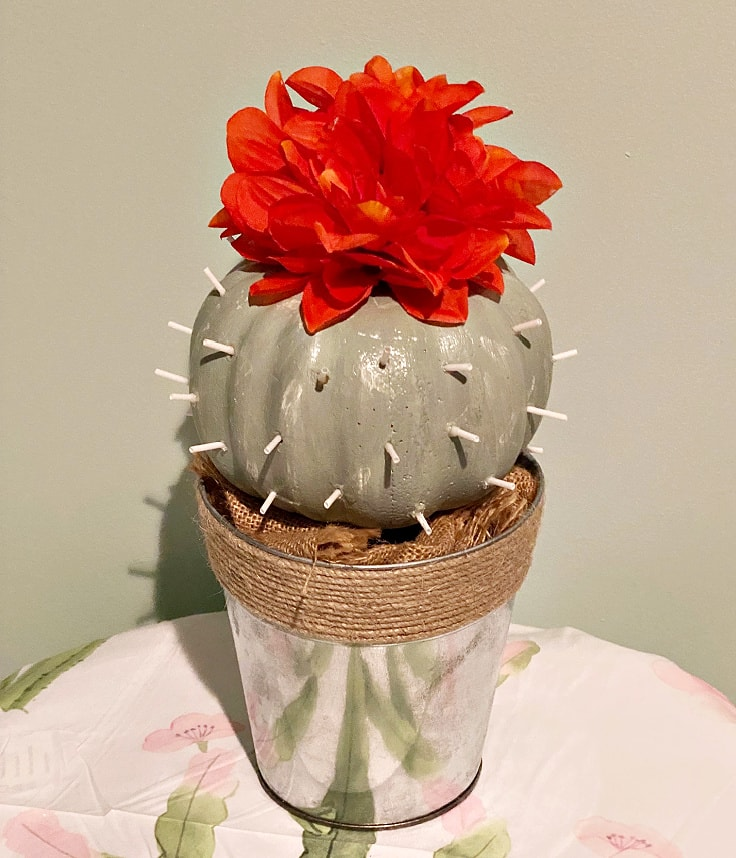 cactus pumpkin with red flowers